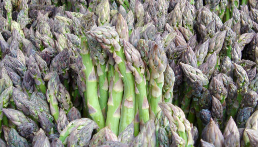 Phytochemicals And Reversing Disease