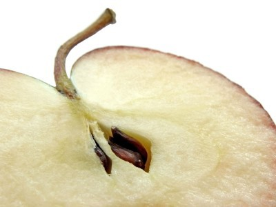 Phytochemicals in apple seeds