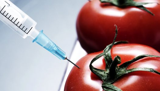 On the Race to Stop Monsanto