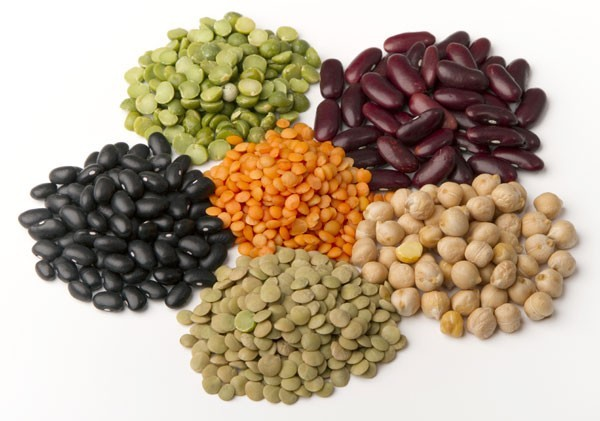 Legumes, an excellent source of Plant-Based Protein