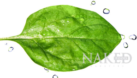 Naked Food Spotlight: Leafy Greens