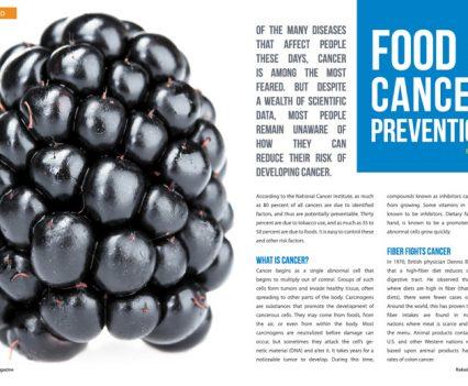 Naked Food Magazine - Spring 2014