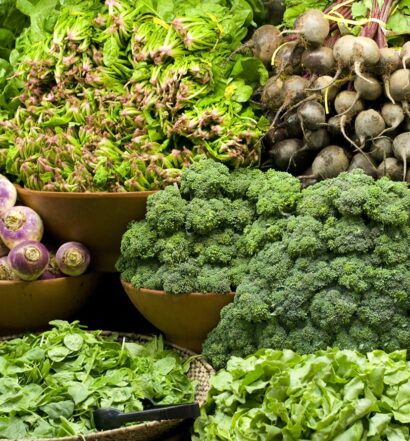 Best Sources of Plant-Protein