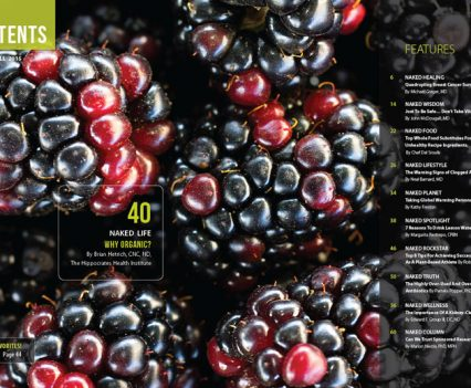 Naked Food Magazine - Fall 2015