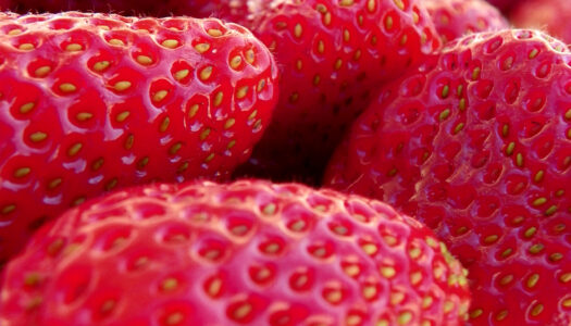 Conventional Strawberries Rank #1 With Most Pesticides