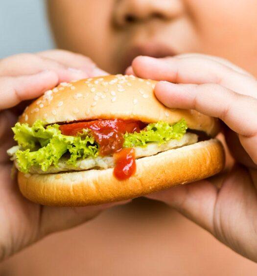 Obesity as Disease