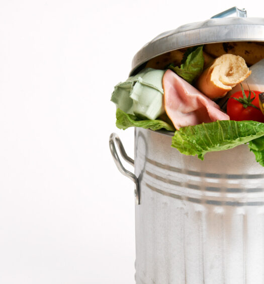 Reducing Food Waste for Climate Change