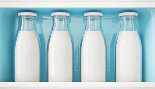 Calcium: Plant vs. Dairy