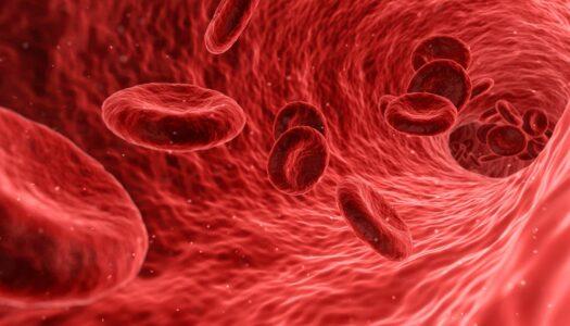 Understanding Immune Defense